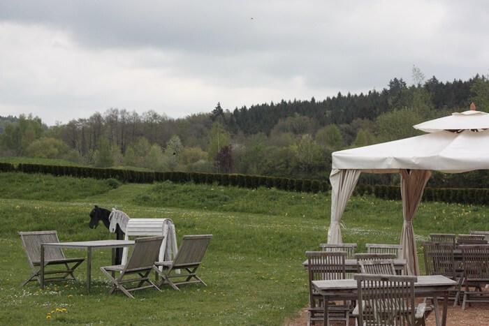 Schlosspark von Schloss Dennenlohe Genuss-mit-fernweh.de Mittelfranken