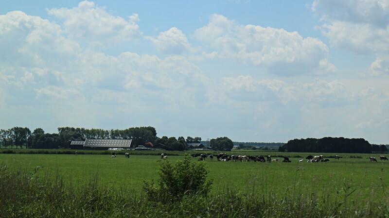 Friesland Bauernhof Genuss-mit-fernweh.de