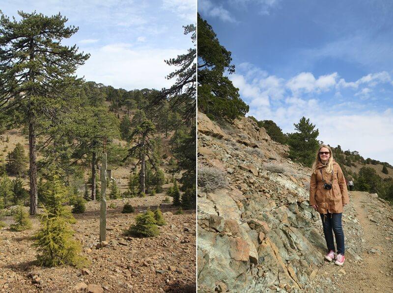 Troodosgebirge Zypern Troodos Genuss-mit-fernweh.de Reiseblog Olymp Wanderung Daniela Reh