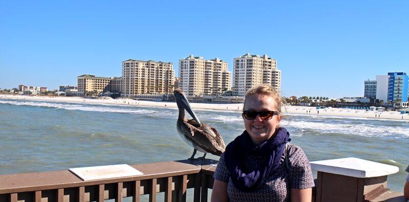 Clearwater Beach Florida USA Sunshine State Ausflugstip schönster Strand Floridas Daniela Reh Pelikan Küste