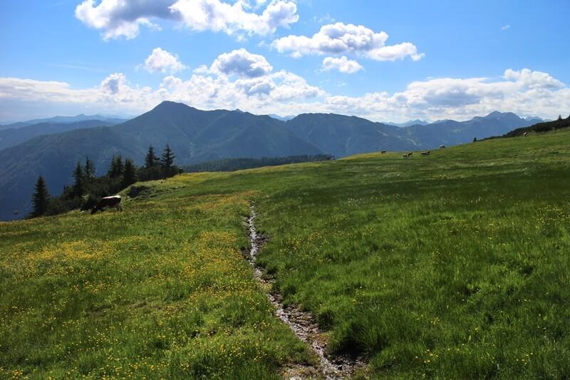 Griessenkareck Wanderung Flachau Wagrain Genuss-mit-fernweh.de Wanderstrecke Urlaub in den Bergen Bergwelten