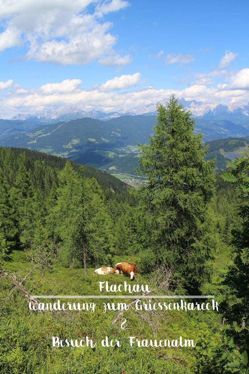 Griessenkareck Wanderung Flachau Wagrain Genuss-mit-fernweh.de Wanderstrecke Urlaub in den Bergen